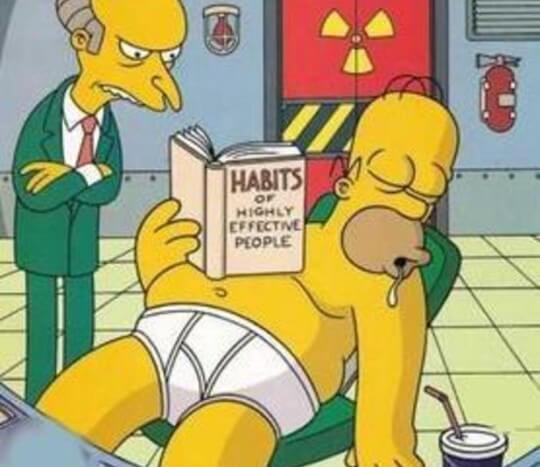 homer-simpson-habits-of-highly-effective-people
